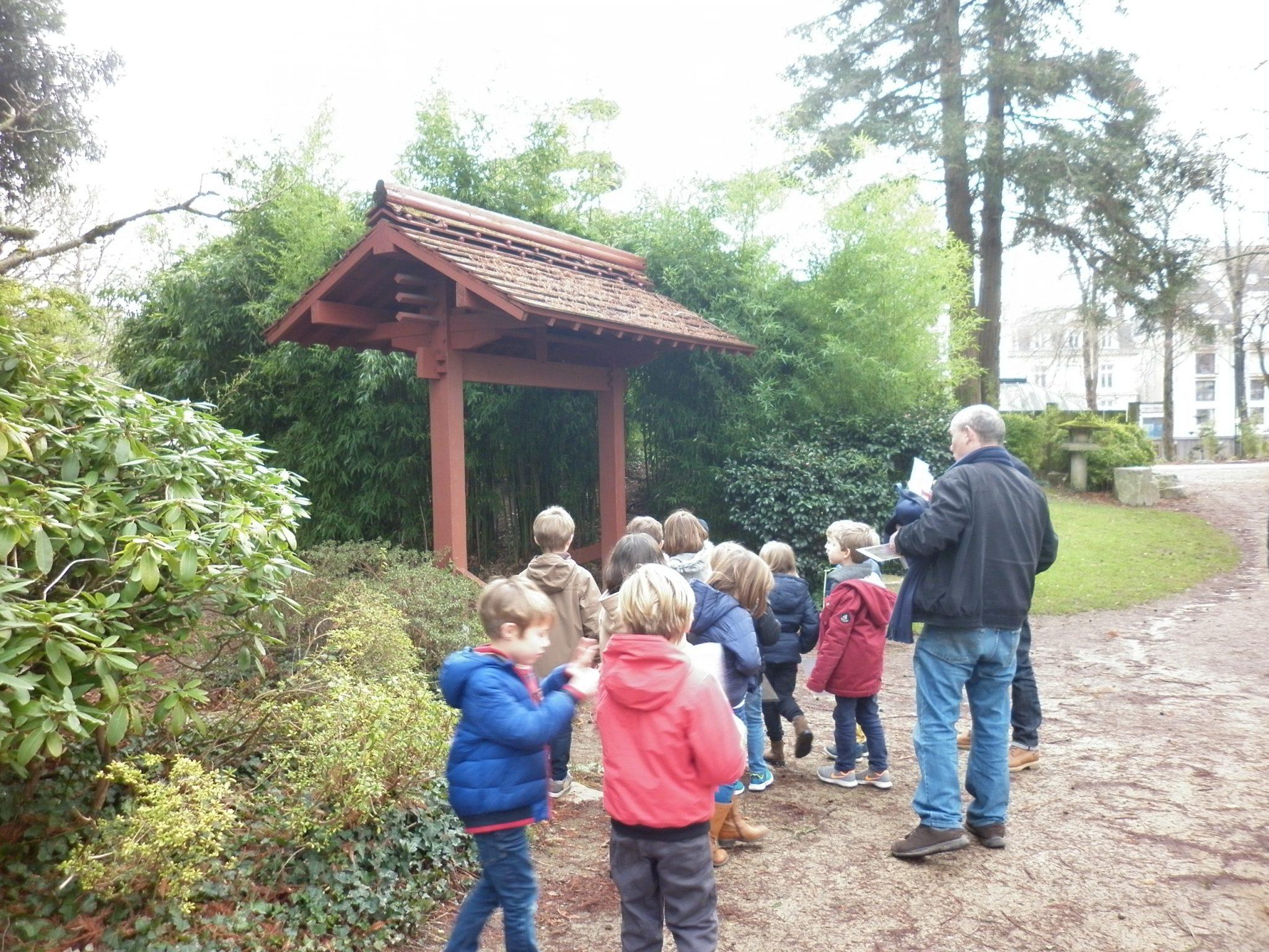 Les cp au jardin japonais de l le de versailles ecole for Jardin japonais dijon